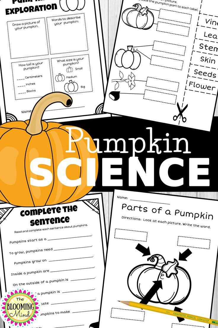Pumpkin Science Worksheets Preschool Writing Science Worksheets Pumpkin Science [ 1104 x 736 Pixel ]