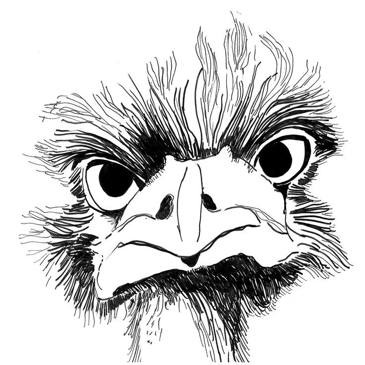 emu / pen + ink / illustration