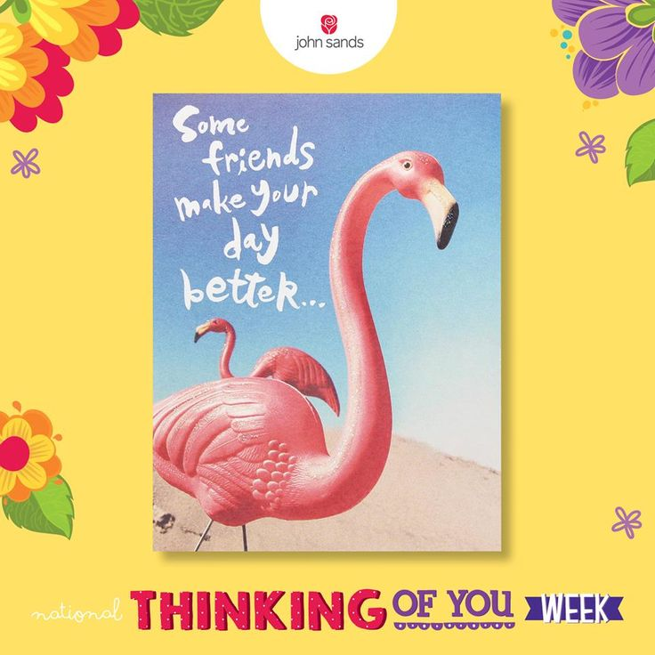..and some friends make your life better. We all have these! Send them a card, it's the last day of National Thinking of You Week! #SendACard #TOYW
