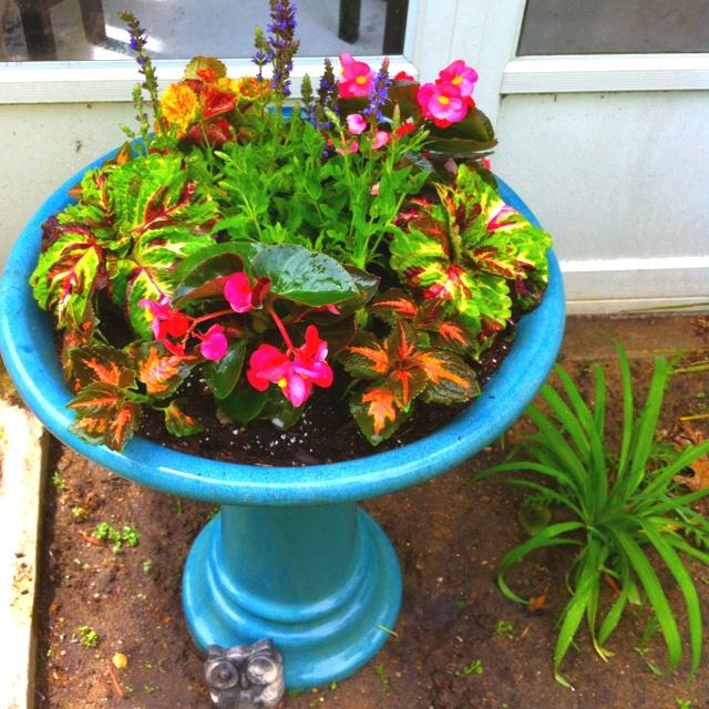 17 Best Ideas About Bird Bath Planter On Pinterest