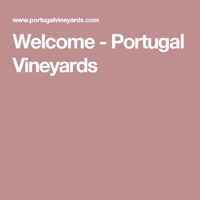 Welcome - Portugal Vineyards