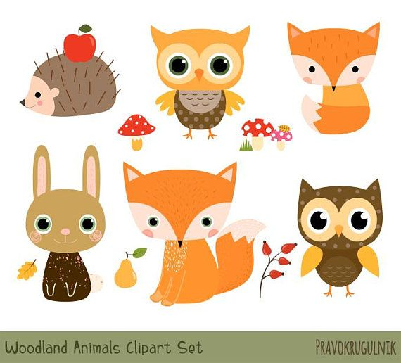 Woodland Animal Clipart Set Cute Forest Animal Clipart Etsy Woodland Animal Clipart Animal Clipart Cute Animal Clipart