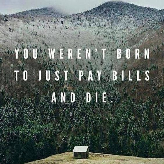 This is true...you were made for more! What if you could work a business that would grow to pay your bills, allow you time freedom and give you the funds to live the life you've dreamed of! Join my team as we promote a global brand that is growing exponentially! Now is the time!