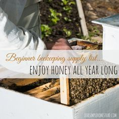 Beginner Beekeeping Supply List – Enjoy Honey All Year Long - There aren't many projects on our homestead that bring us as much satisfaction as our bee hives do.  For a small start-up investment in beekeeping supplies, and the initial hives, this addition to our farm has really paid off. #bees #honey