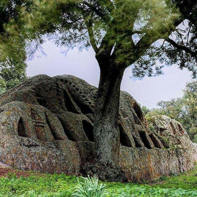 """Altare nuragico "" località Santo Stefano - Oschiri (SS) #Sardinia#Cerdeña#Sardegna."