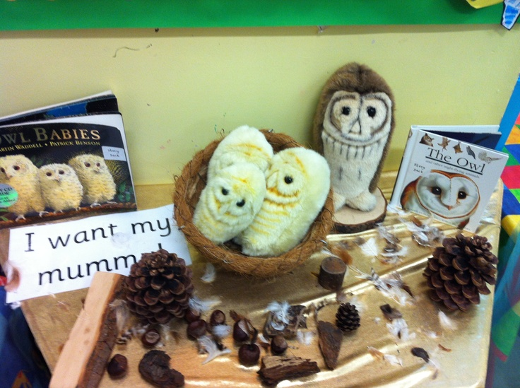 Owl babies display.