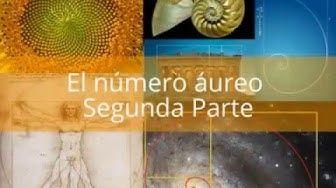 EL NUMERO AUREO Y LA SECUENCIA DE FIBONACCI - PROPORCION DIVINA -NUMERO DE ORO