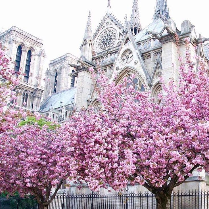 il IV arrondissement di Parigi si chiama così per la splendida cattedrale di Notre Dame. Camminare lungo le rive della Senna per giungere davanti alla spettacolare architettura gotica è una delle più belle passeggiate che si possa fare a Parigi.