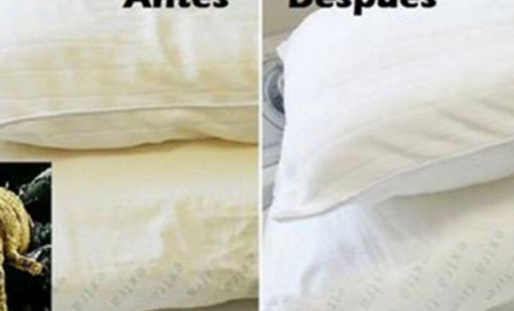 Aprende a lavar y blanquear tus Almohadas amarillas que atrapa acaros y producen alergias
