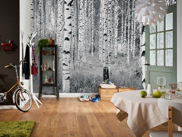 Interior decorado con fotomural woods xxl4 023 nuevos for Murales para decoracion de interiores