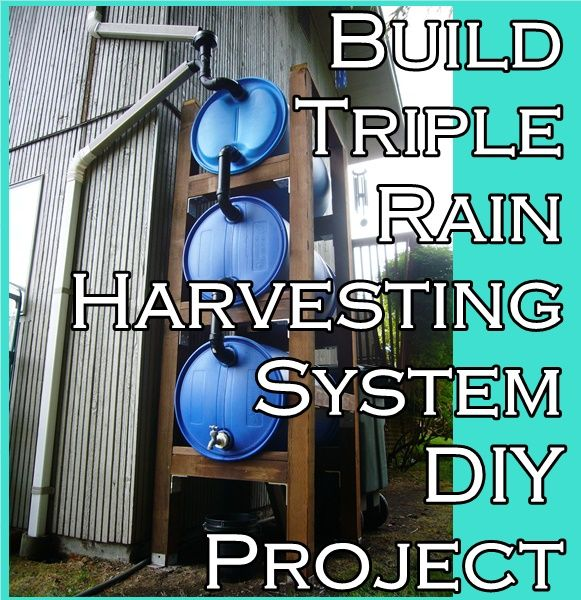 "Build Triple Rain Harvesting System DIY Project Homesteading  - The Homestead Survival .Com     ""Please Share This Pin"""