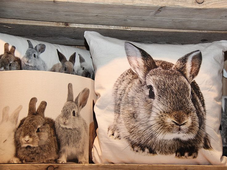 kussen canvas konijn bruin - Canvas dieren - Kussens