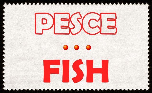 Imparare l'inglese: TIPI DI PESCE. Per leggere l'articolo apri l'immagine e clicca sulla foto