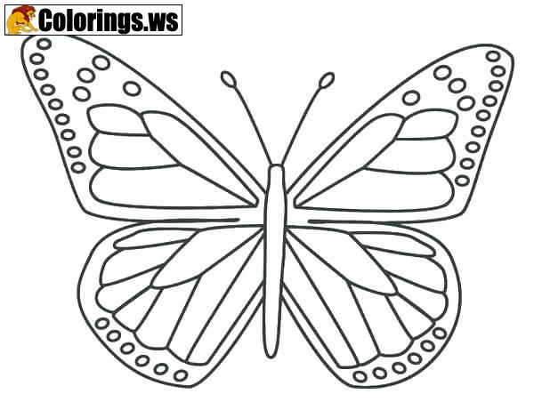 Cute Butterfly Coloring Pages Butterfly Coloring Pages