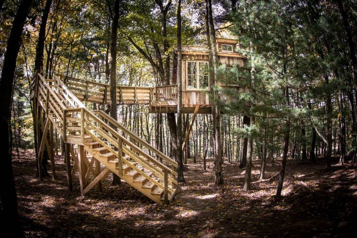 GLENMONT, Ohio - Ever just want to get away from it all...maybe go live in a tree house? You only have to drive about two hours south of Cleveland to do just that. It's all thanks to a family run b...