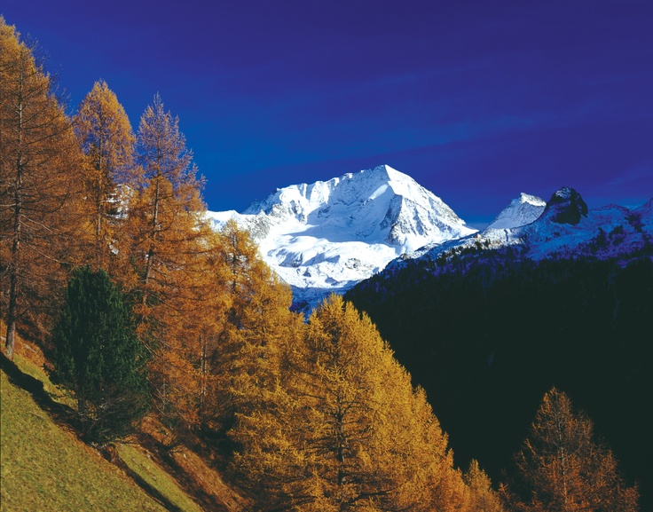 Foliage in Valle Aurina - www.tures-aurina.com