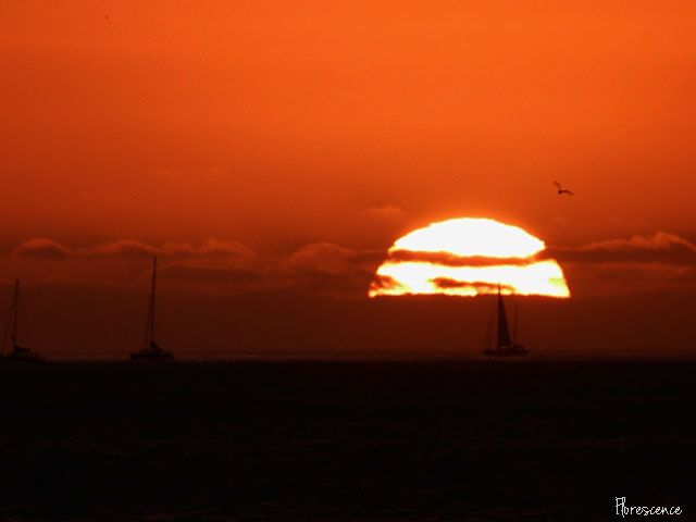 Sunset, Table Bay from, Milnerton, Cape Town, (c) Florescence