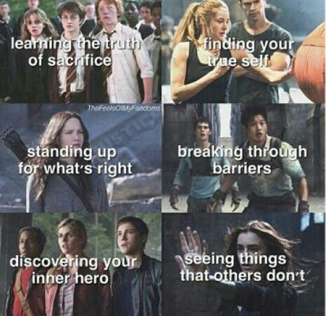 Harry Potter, Divergent, Hunger Games, Maze Runner, Percy Jackson, The Mortal Instruments