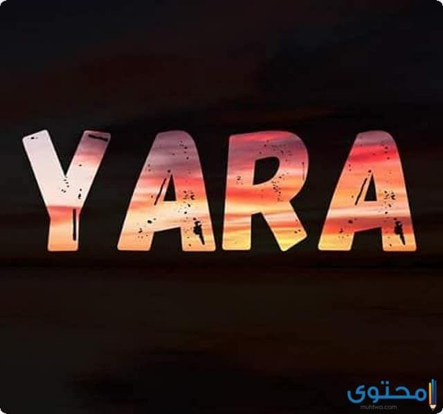 معني اسم يارا وصفات شخصيتها Yara معاني الاسماء اسم يارا اسم يارا بالإنجليزي Nintendo Wii Logo Cinema Gaming Logos