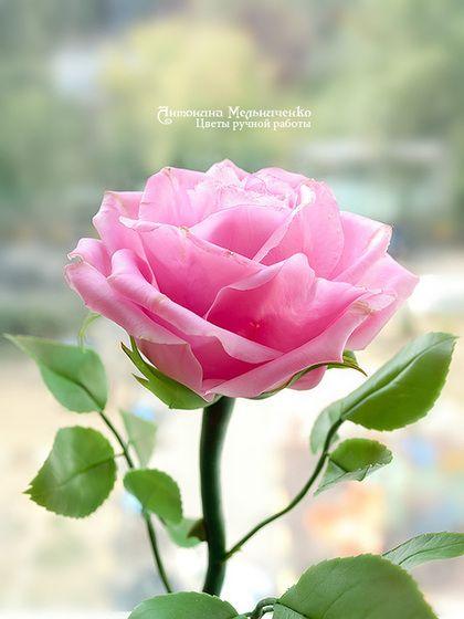 Роза полноразмерная - 4 - роза,роза из полимерной глины,полноразмерная роза