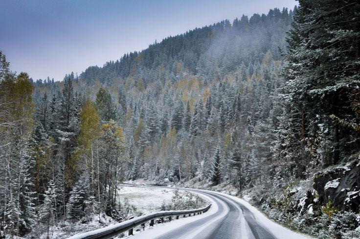 Winter road by Lidia, Leszek Derda on 500px