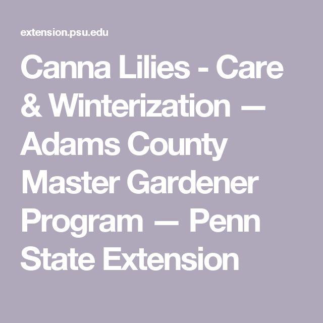 Canna Lilies - Care & Winterization — Adams County Master Gardener Program — Penn State Extension