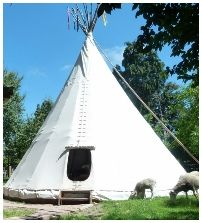 Tipi, tipis, accommodation, Wacky Stays, Kaikoura