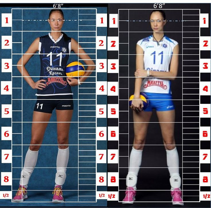 Human Proportions Study. Yekaterina Gamova 2 by WaffleJockey.deviantart.com on @DeviantArt Figure 1