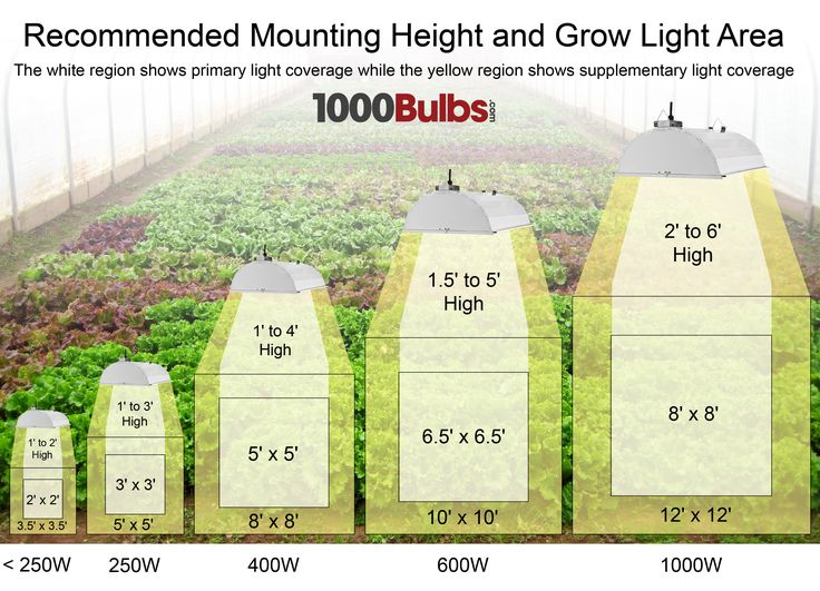 Grow Light Coverage Infographic
