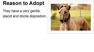 Greyhound Adoption Program SA - Application to Adopt Form