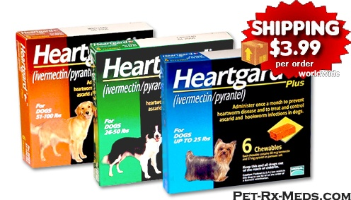 Discount pet medications coupons
