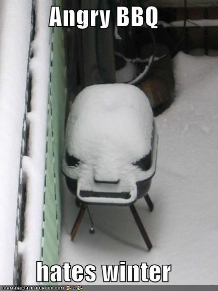 angry bbqWinter Snow, Humor Pictures, Laugh, Bbq Grilled, Funny Pictures, Hate Winter, Hard Time, Angry Bbq, Digital Photography