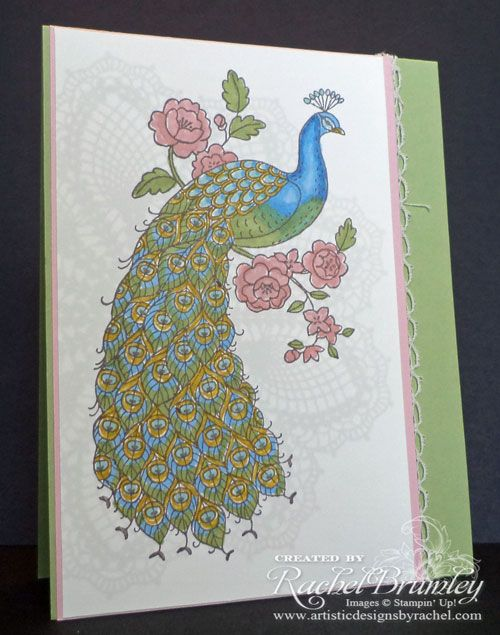 Perfect Peacock - Stampin' Up!