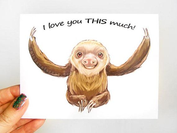 sloth valentine card tumblr