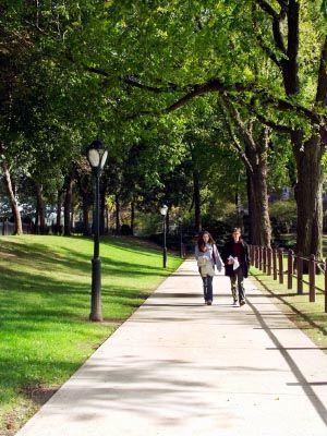 Robert B. Willumstad School of Business - Adelphi Universi... Garden City, NY Type Private Setting Suburban Size 438 students