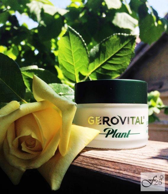review crema de fata cu maci de la  gerovital https://femeia25plus.com/2016/06/04/review-crema-de-fata-din-flori-de-mac-de-la-gerovital/