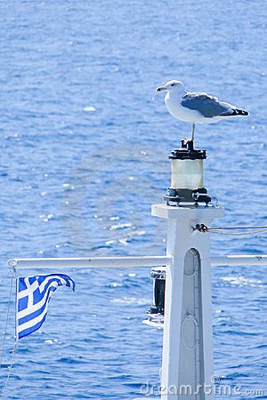 A seagull, the greek flag and the amazing Aegean blue...