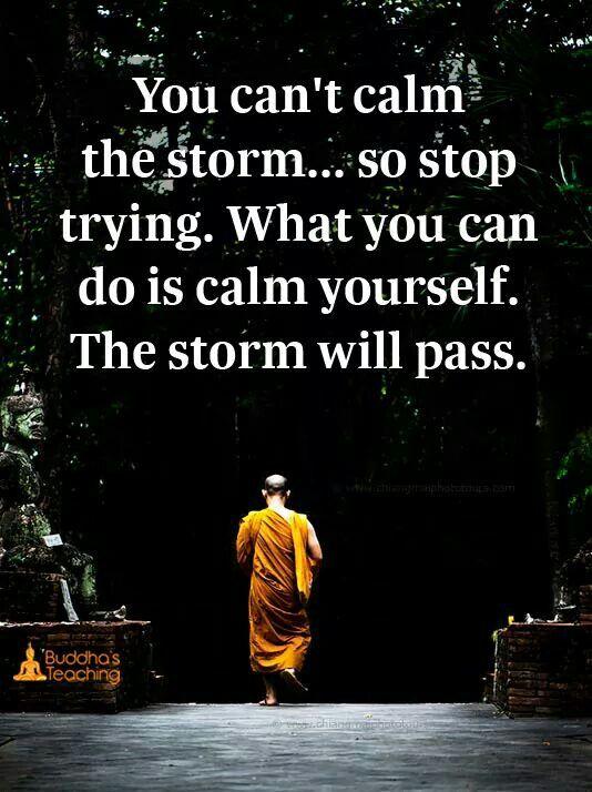 Calm yourself.., ✨✨