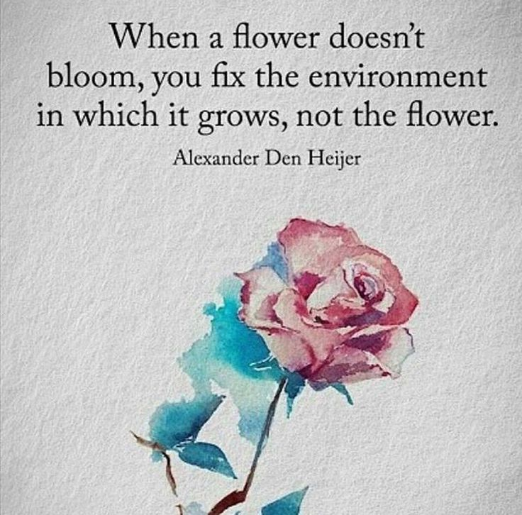 Flower Love Quotes Glamorous The 25 Best Flower Quotes Ideas On Pinterest  Flower Quotes