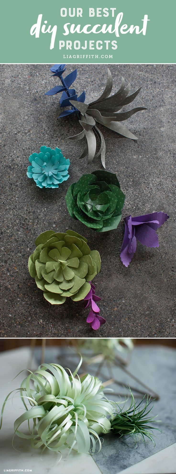 Our Best DIY Succulent Projects - Lia Griffith - www.liagriffith.com #paper #paperart #diysucculents #felt #feltcraft #feltcute #diyplants #diyidea #diyprojects #diyinspiration #madewithlia