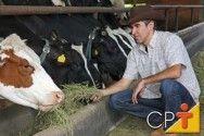 Proteína e energia na alimentação de gado de leite #alcanceosucesso
