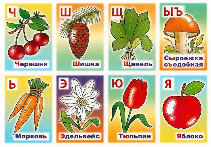 себе названия садовых с картинками по алфавиту брюнетка