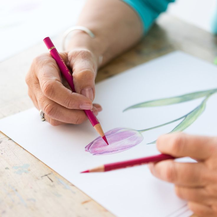 7 Easy Colored Pencil Projects for Beginners to Slay ...