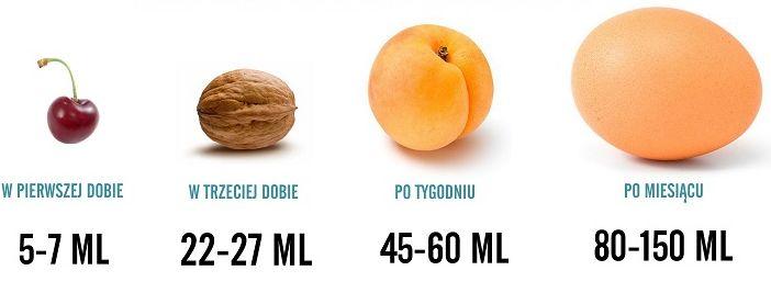 Czy wiesz, że...      Pierwszego dnia  po narodzinach żołądek maluszka jest nie większy niż owoc wiśni.    Ma pojemność około 5-7 ml ,  co ...