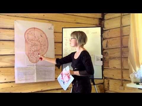 03 Формы и зоны ушной раковины. Школа по Аурикулотерапии - YouTube