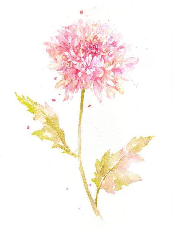 Fine Art Watercolor Painting Flower Art Yellow Pink Chrysanthemum Watercolor Print Gic Watercolor Flower Art Watercolor Flowers Paintings Flower Painting