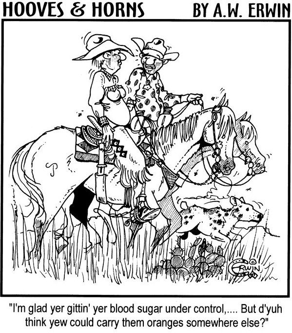 Image result for funny cowboy comic