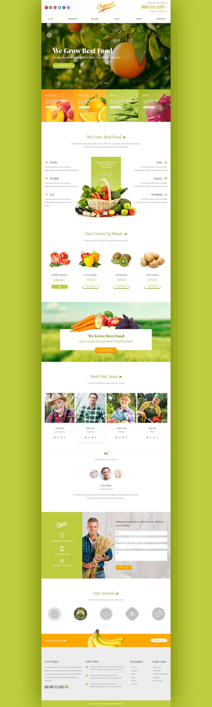 Organic is a bright and eye catching design for agriculture topic. The theme can be used for small farm website, organic food store or market. We built the theme with further conversion to HTML and...