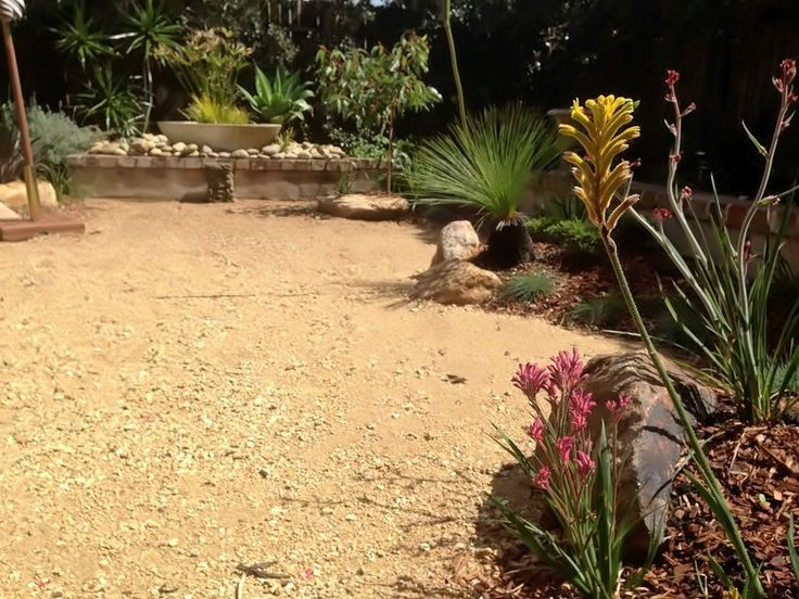 93 Best Native Australian Gardens Images On Pinterest Australian - native garden design canberra