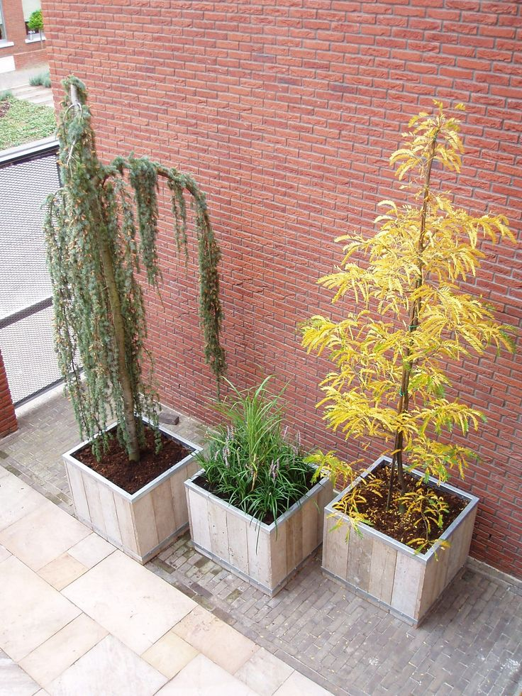 Plantenbakken steigerhout en verzinkt staal